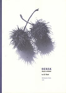 Ozasa cover for footer
